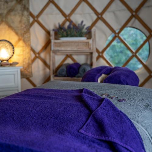 Inside The Yurt Experience